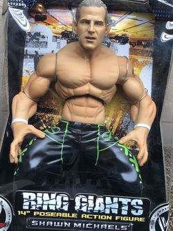 """2007 Jakks Pacific WWE Ring Giants 14"""" for Sale in Fresno,  CA"""