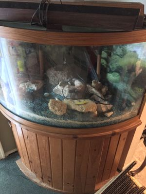 55 Gallon Aquarium for Sale in Germantown, MD