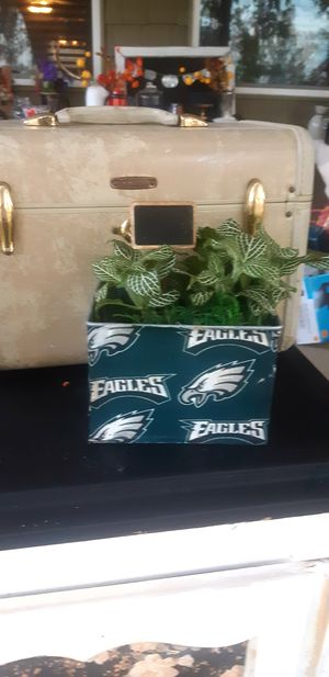 Eagles plants for Sale in Croydon, PA