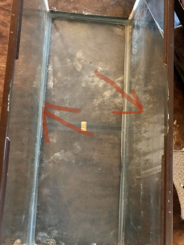 50 Gallon Fish or Reptile tank used in Great Condition $200