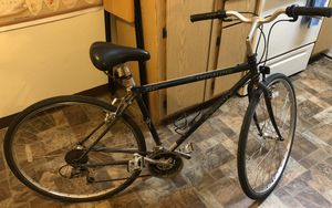 Men's 21 Speed Crossroads Specialized Hybrid Bike for Sale in Phoenix, AZ
