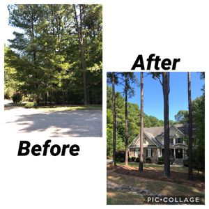 Tree removal for Sale in Wake Forest, NC