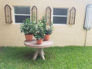 Solid Concrete Pedestal for Sale in Tampa, FL
