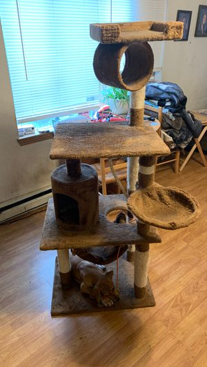 Pet club cat tower for Sale in Aberdeen, WA