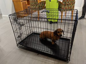 Folding dog crate for medium size dogs for Sale in Miami Beach, FL