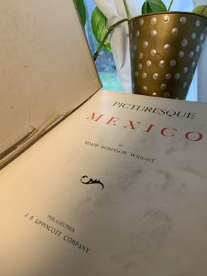 'Picturesque Mexico' Book (1897) for Sale in Portland, OR