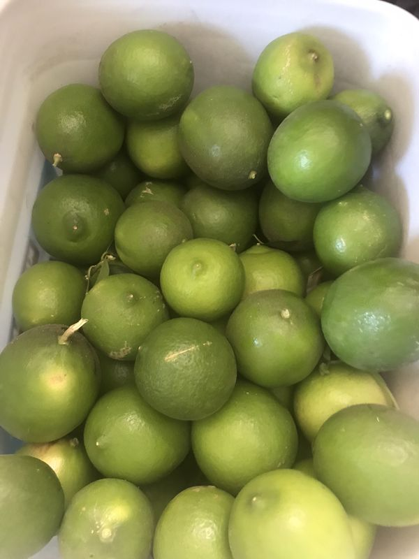 Limes( fresh large organic grown)