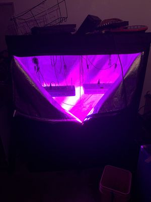 Grow tent and led lights for Sale in Orlando, FL
