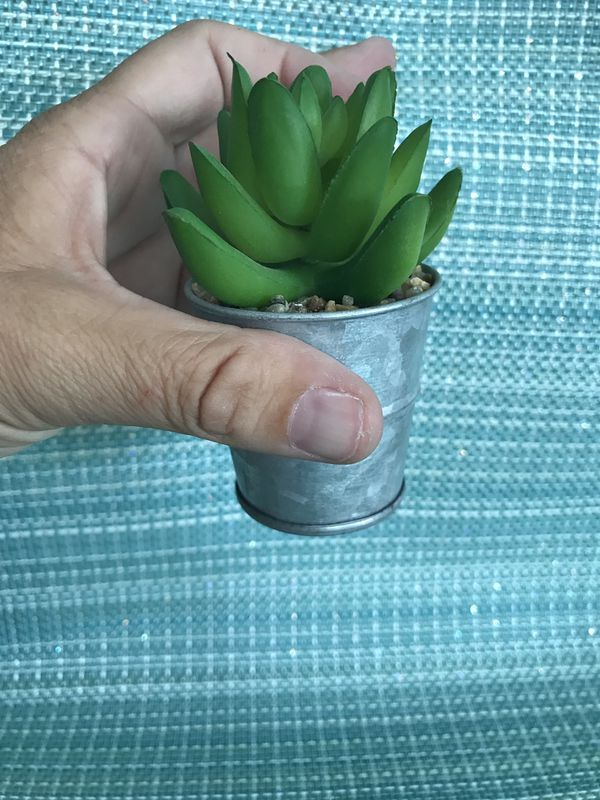 "#2 2"" artificial succulent in a tin can"