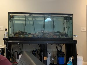 225 gallon fish tank for Sale in Raleigh, NC