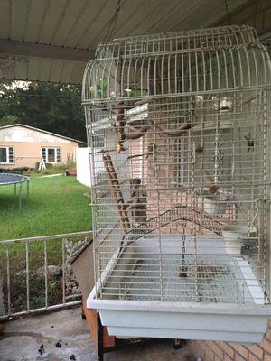 Huge bird cage for Sale in Eagle Lake, FL