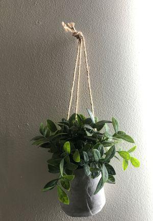 Room decor plants and flower shaped ring jewelry holders (2) for Sale in San Diego, CA