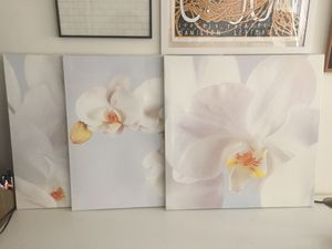 Set of 3 Orchid Flower Canvas Photos Wall Art for Sale in Arlington, VA