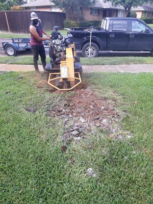 STUMP GRINDING for Sale in Grand Prairie, TX