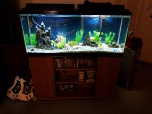 55 Gallon Fish Tank. Tropical Fish and Tank Stand Included. for Sale in South Prairie, WA