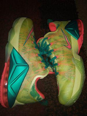 Nike Lebron size mens 12 for Sale in Newport News, VA