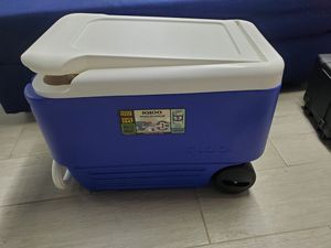 Igloo wheeled cooler for Sale in Queens, NY