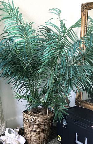artificial palm plant for Sale in San Diego, CA