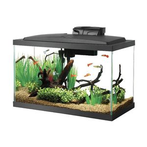 Aqueon LED Black, Fish Tank 10 Gallons for Sale in Fresno, CA