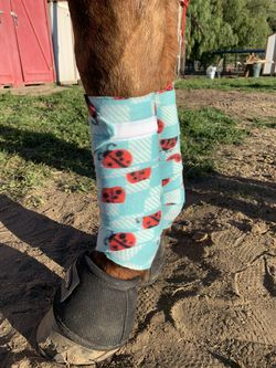 Horse Polo Wraps (hand for Sale in Spring Valley,  CA