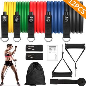 Brand new 12 pieces resistance bands set 150 Ibs with handles leg ankles door anchor carry bag manual. for Sale in Falls Church, VA