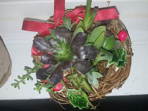 Christmas succulent wreath for Sale in Fresno, CA