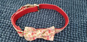 Dog collar for Sale in Spring Hill, FL