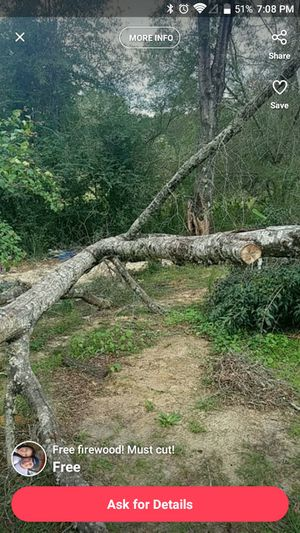 Free Firewood, must come cut for Sale in Fulton, MS
