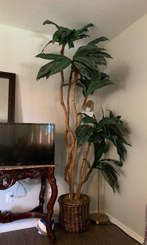 8ft tall fake plant for Sale in Mission Viejo, CA