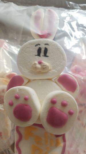 Marshmallow animals forValentine's day for Sale in Birmingham, AL