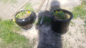 Planting pot for Sale in Las Vegas, NV
