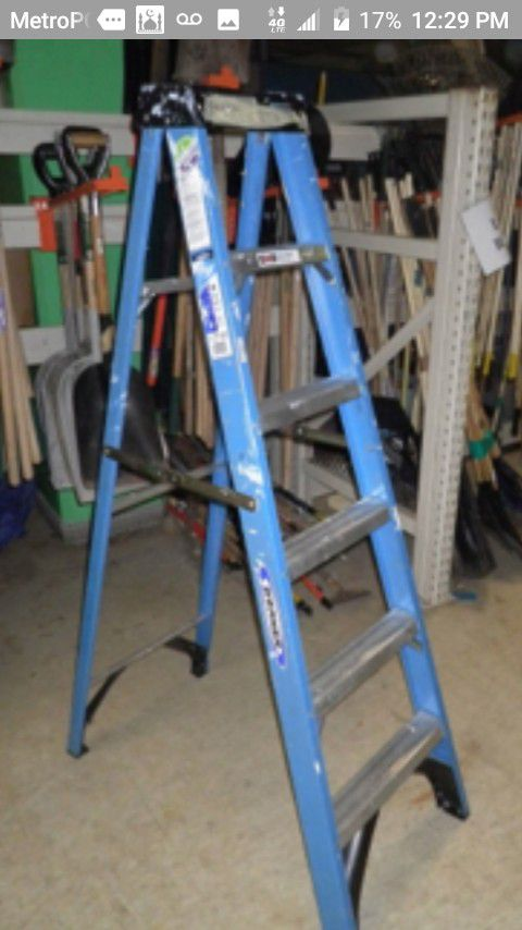 '6 step ladder werner