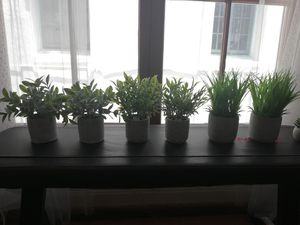 Mini faux plants for Sale in Los Angeles, CA