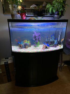 Beautiful fish tank for sale for Sale in Addison, IL