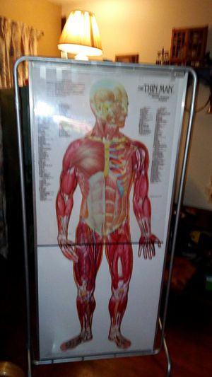 Thin man sequential human anatomy program for Sale in Evansville, IN