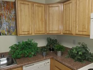 Plants fake for Sale in Prescott Valley, AZ