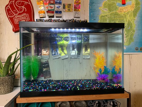 FISH TANK SET UP!!