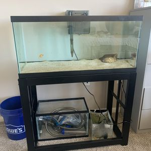 40 Gal Tank, Filter, And Stand (No Fish) for Sale in Upland, CA