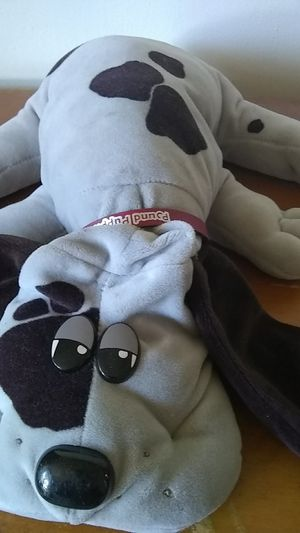 1980's pound puppies for Sale in New Bedford, MA