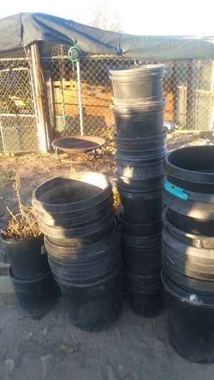 Free black plastic pots for Sale in Hesperia, CA