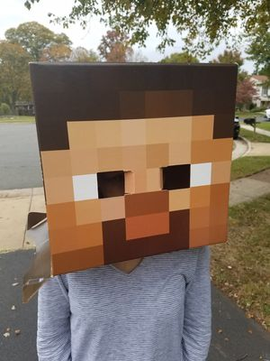 Halloween costume mindcraft for Sale in Herndon, VA