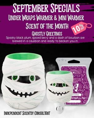 Scentsy Warmer for Sale in Columbus, OH