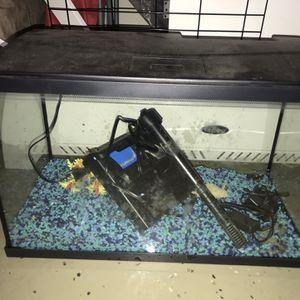 Fish Tank Top Fin 10 Gallon for Sale in Walnut, CA