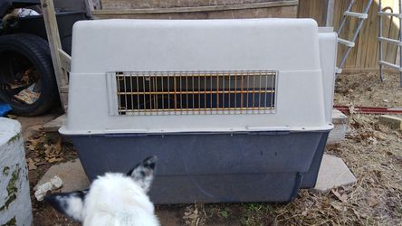 Large breed dog kennel for Sale in Jones,  OK