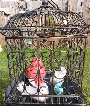 birdcage with two ceramic birds for Sale in Tampa, FL