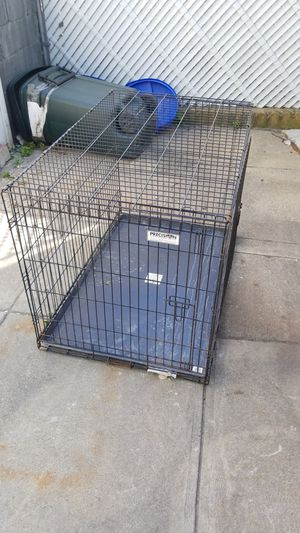 Precision animal cage for Sale in Brooklyn, NY
