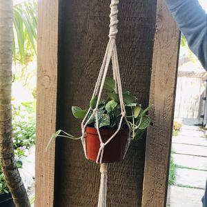 Macrame Plant Hanger! for Sale in Fallbrook, CA