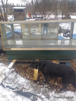 All glass display case for Sale in Binghamton, NY