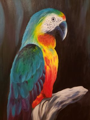 "Large 30"" x 60"" beautiful hand painted parrot on canvas for Sale in Peoria, IL"