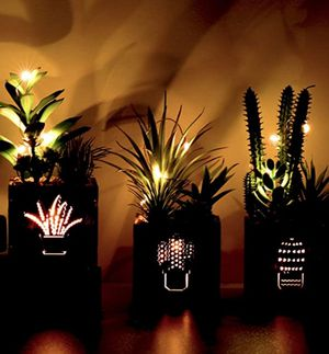UNIQUE PLANTS ARTIFICIAL SUCCULENTS WARM DECORATIVE LED LIGHTS BRAND NEW AND NEW AND IN THE BOX for Sale in Bowie, MD
